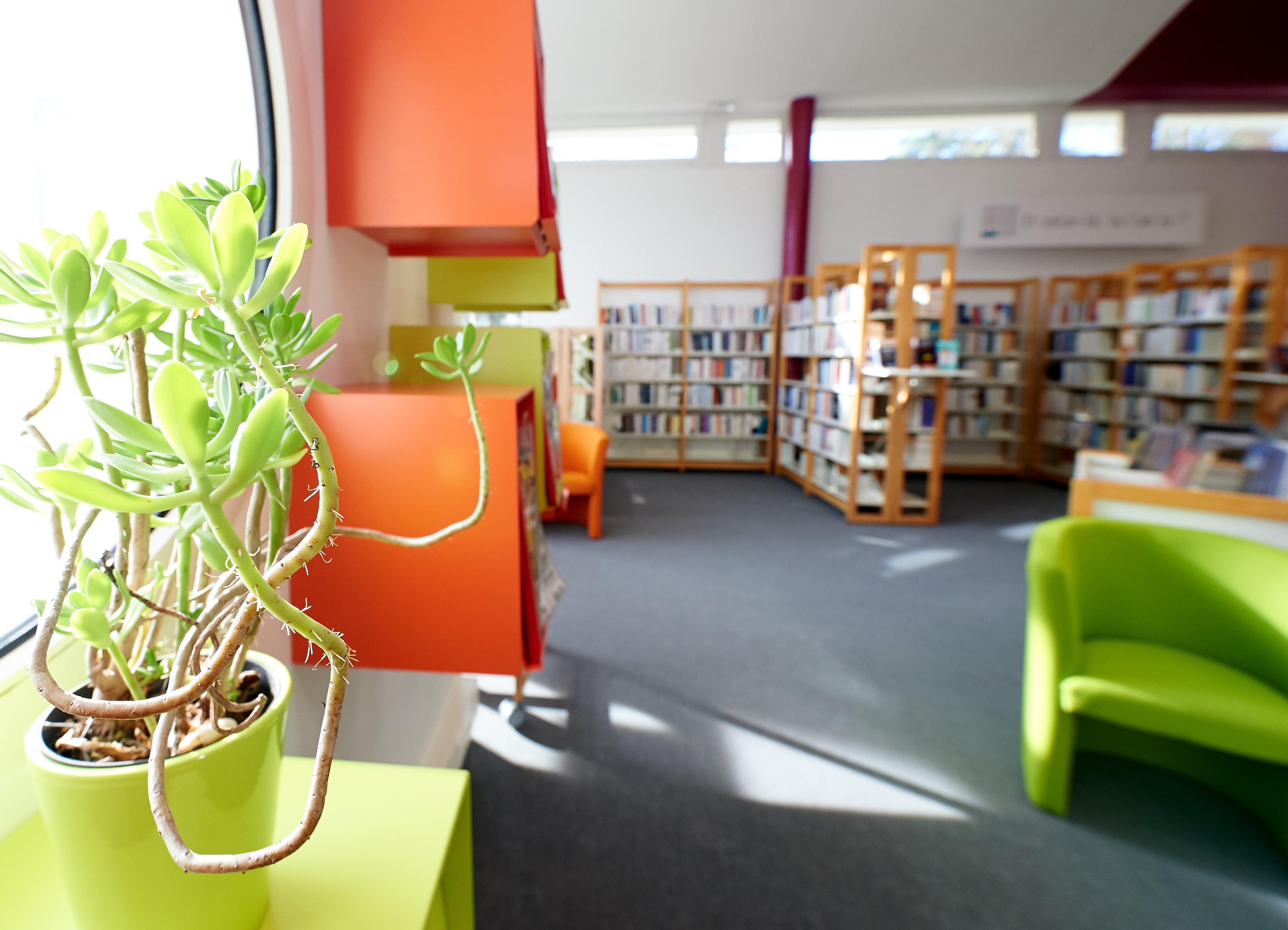 Bibliothèque, May-sur-Evre